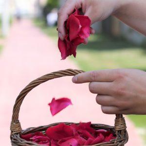 Tijelovo – svečana proslava svetkovine Tijela i Krvi Kristove
